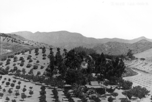 Clausen's Ranch, at the foot of Beachwood Canyon, c. 1895/ Courtesy Los Angeles Public Library, Security Pacific Collection