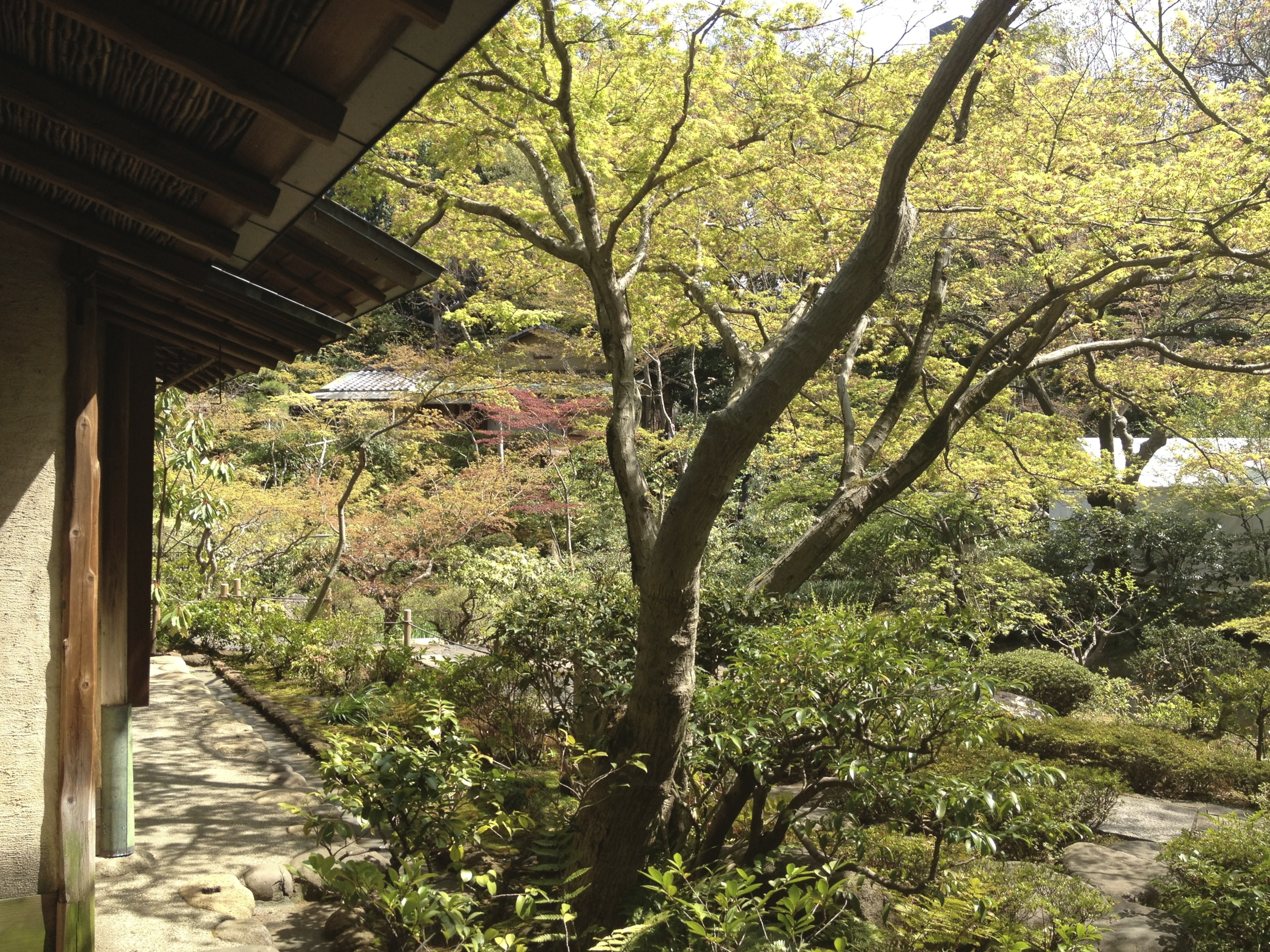 Paper Houses: On Writing About Japanese Architecture | Under the ...
